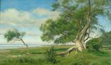 """Арт-студия """"Кентавр"""" - """"Пейзаж с деревом""""  №010070"""