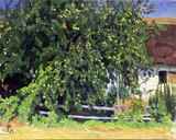 """Арт-студия """"Кентавр"""" - Хансен Петер Мариус (1868-1928) - """"Домик в саду""""  №012275"""