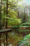 """Арт-студия """"Кентавр"""" - """"Лесной пейзаж c рекой"""" №009572"""