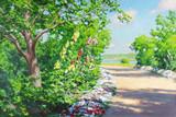 "Арт-студия ""Кентавр"" - Краутен Йохан (1858-1932) - ""Дорога в саду у озера"" №009651"